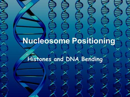 Nucleosome Positioning Histones and DNA Bending. DNA packaging 3 X 10 9 base pairs in human genome ~1 m if unraveled Compacted into nucleus –100  m in.