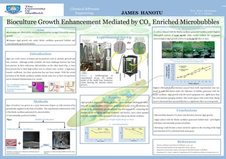 Chemical &Process Engineering. Bioculture Growth Enhancement Mediated by CO 2 Enriched Microbubbles 2009 Prof. W.B.J. Zimmerman Dr D. J. Gilmour Introduction.