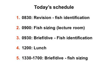 Today's schedule 1.0830: Revision - fish identification 2.0900: Fish sizing (lecture room) 3.0930: Brief/dive - Fish identification 4.1200: Lunch 5.1330-1700: