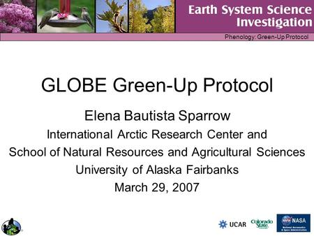 Phenology: Green-Up Protocol GLOBE Green-Up Protocol Elena Bautista Sparrow International Arctic Research Center and School of Natural Resources and Agricultural.