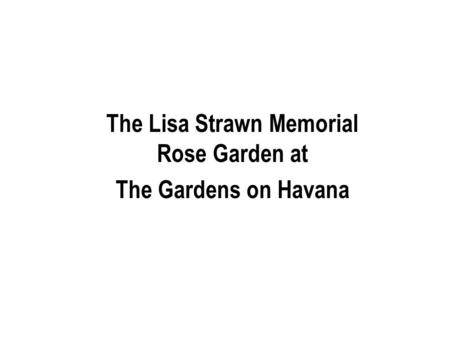 The Lisa Strawn Memorial Rose Garden at The Gardens on Havana.