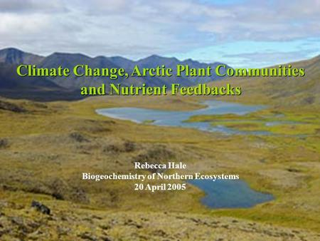 Climate Change, Arctic Plant Communities and Nutrient Feedbacks Rebecca Hale Biogeochemistry of Northern Ecosystems 20 April 2005.