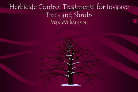 Herbicide Control Treatments for Invasive Trees and Shrubs Max Williamson.