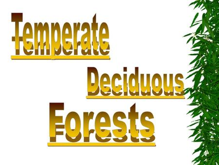 Temperate Deciduous Forests.