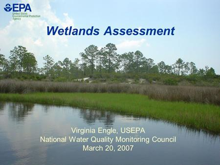 Wetlands Assessment Virginia Engle, USEPA National Water Quality Monitoring Council March 20, 2007.