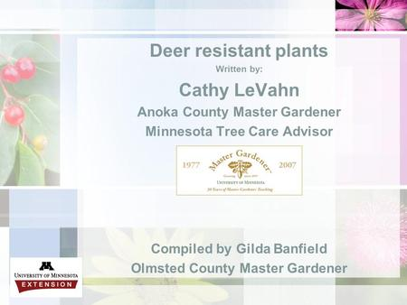 Deer resistant plants Written by: Cathy LeVahn Anoka County Master Gardener Minnesota Tree Care Advisor Compiled by Gilda Banfield Olmsted County Master.