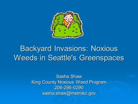 Backyard Invasions: Noxious Weeds in Seattle's Greenspaces Sasha Shaw King County Noxious Weed Program