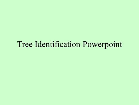 Tree Identification Powerpoint. Forested The definition of forested (land that is forested or has trees growing on it): to be classified as forested (forestland)