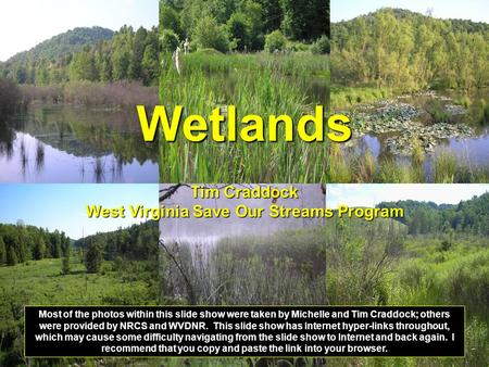Wetlands Tim Craddock West Virginia Save Our Streams Program Most of the photos within this slide show were taken by Michelle and Tim Craddock; others.