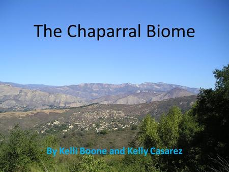 The Chaparral Biome By Kelli Boone and Kelly Casarez.