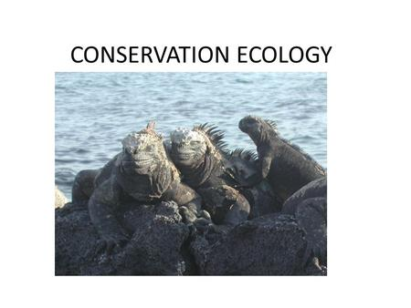 CONSERVATION ECOLOGY.