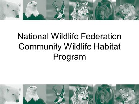National Wildlife Federation Community Wildlife Habitat Program.