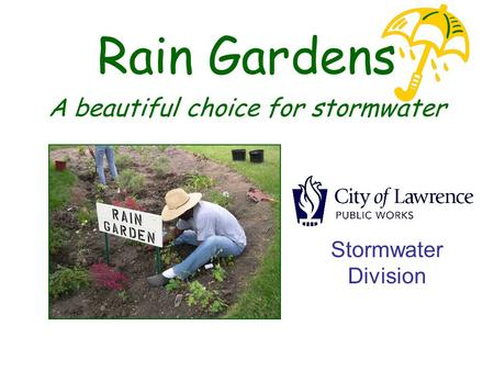 Rain Gardens A beautiful choice for stormwater Stormwater Division.