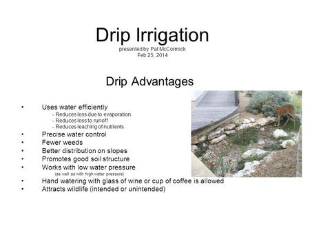 Drip Irrigation presented by Pat McCormick Feb 25, 2014