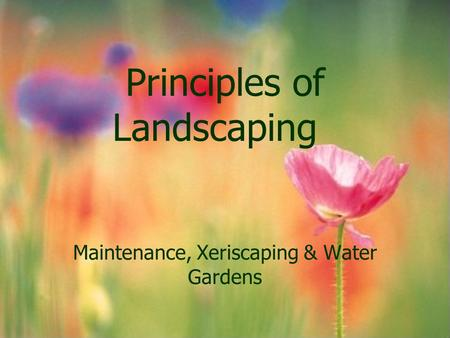 Principles of Landscaping Maintenance, Xeriscaping & Water Gardens.