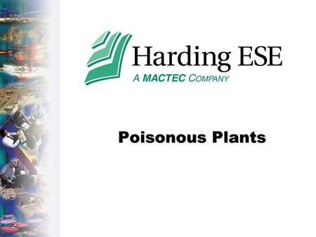 Poisonous Plants. Accident Costs-HLA.ppt - Page 2 MACTEC, Inc. Company Private Irritants - Poisonous Plants.