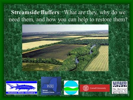 Streamside Buffers: What are they, why do we need them, and how you can help to restore them?