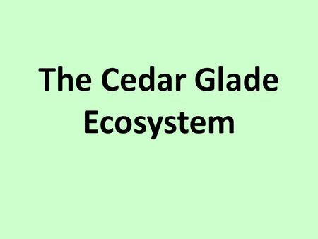 The Cedar Glade Ecosystem. What is a cedar glade? Endangered Ecosystem Characteristics: – Very thin soil layers – Exposed limestone rock – Surrounded.