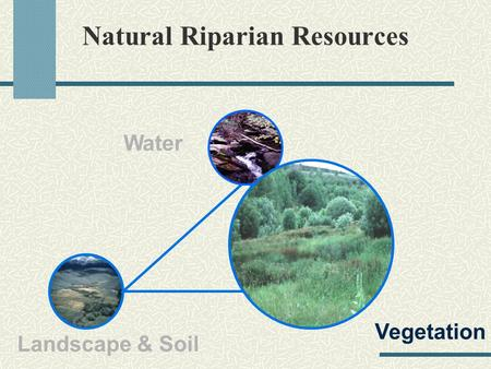 Vegetation soil landscape hydrology process for assessing for Soil resources definition