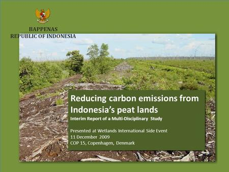 Reducing carbon emissions from Indonesia's peat lands COP15 December 2009 COP15 December 2009 Reducing carbon emissions from Indonesia's peat lands COP15.