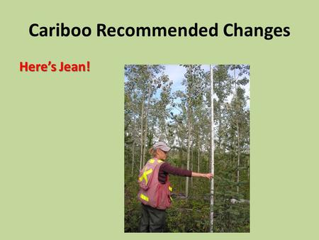 Cariboo Recommended Changes Here's Jean!. INTERIOR Free Growing Crop Tree Appendix 9 Interpretation 2012 Is the Herb and/or Shrub vegetation taller than.