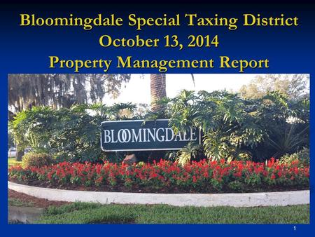 1 Bloomingdale Special Taxing District October 13, 2014 Property Management Report.