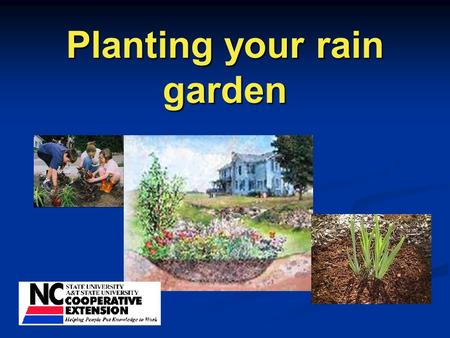 Planting your rain garden. Choices, choices! Low to high density.