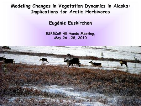 Modeling Changes in Vegetation Dynamics in Alaska: Implications for Arctic Herbivores Eugénie Euskirchen ESPSCoR All Hands Meeting, May 26 -28, 2010.