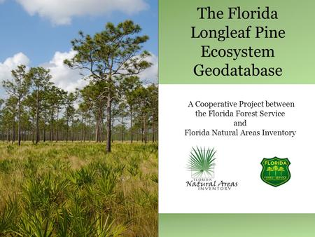 The Florida Longleaf Pine Ecosystem Geodatabase A Cooperative Project between the Florida Forest Service and Florida Natural Areas Inventory.