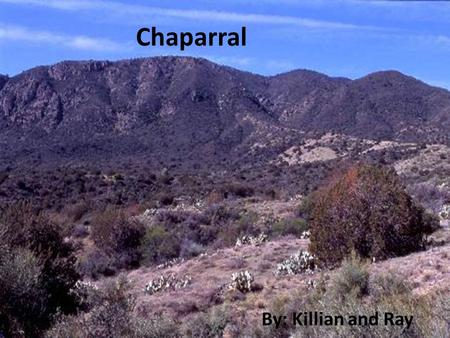 Chaparral By: Killian and Ray. The Chaparral (Scrub Forest) It is the smallest Biome Found on 5 of the world's continents: In Europe and Africa it is.
