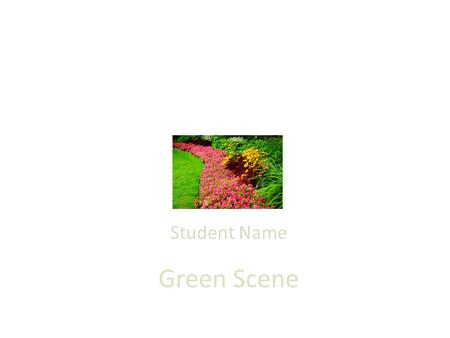 Green Scene Student Name. Green Scene Services Lawn Mowing, Triming & edging Aeration, fertilization, weed control We also do Spring and Fall Clean-up.