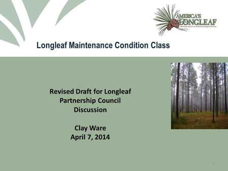 Longleaf Maintenance Condition Class 1 Revised Draft for Longleaf Partnership Council Discussion Clay Ware April 7, 2014.