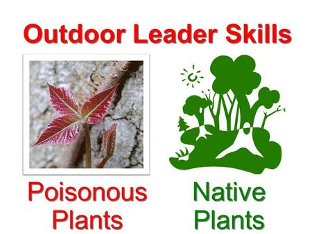 Outdoor Leader Skills Native Plants Poisonous Plants.