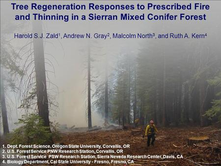 Tree Regeneration Responses to Prescribed Fire and Thinning in a Sierran Mixed Conifer Forest Harold S.J. Zald 1, Andrew N. Gray 2, Malcolm North 3, and.