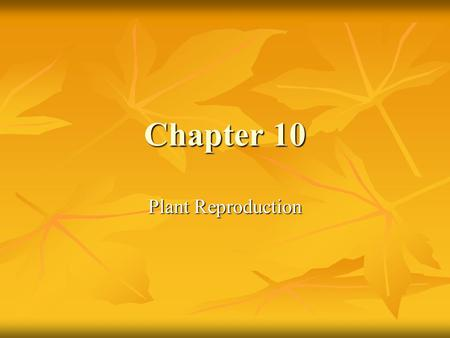 Chapter 10 Plant Reproduction.