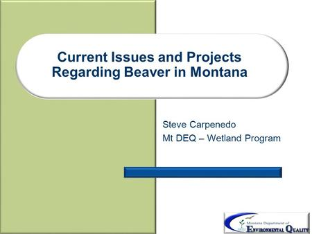 Current Issues and Projects Regarding Beaver in Montana Steve Carpenedo Mt DEQ – Wetland Program.