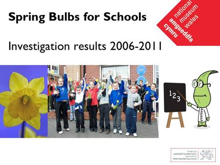 Spring Bulbs for Schools Investigation results 2006-2011.