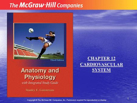 1 Copyright © The McGraw-Hill Companies, Inc. Permission required for reproduction or display. CHAPTER 12 CARDIOVASCULAR SYSTEM.