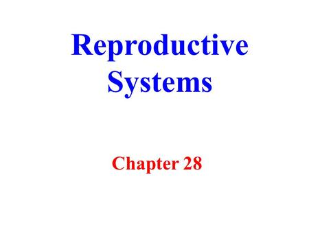 Reproductive Systems Chapter 28.