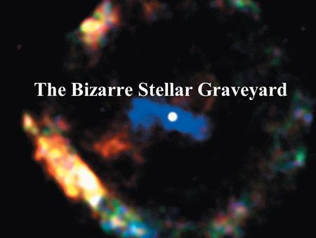 The Bizarre Stellar Graveyard. White Dwarfs Our goals for learning What is a white dwarf? What can happen to a white dwarf in a close binary system?