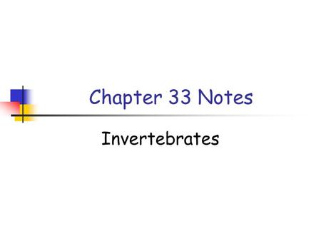 Chapter 33 Notes Invertebrates.