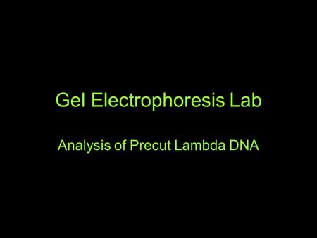 Gel Electrophoresis Lab Analysis of Precut Lambda DNA.