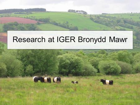 Research at IGER Bronydd Mawr. Less Favoured Areas (LFAs) Hill and upland farming: Utilises 42% of UK agricultural land Carries >60% of UK breeding cattle.