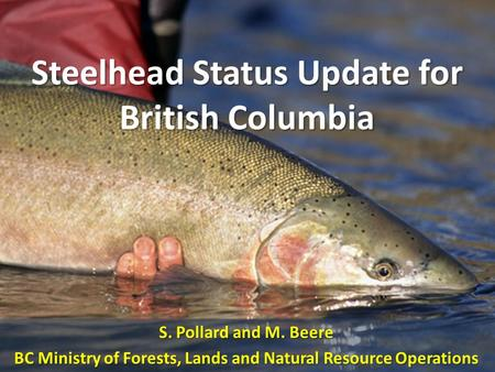 Steelhead Status Update for British Columbia S. Pollard and M. Beere BC Ministry of Forests, Lands and Natural Resource Operations.