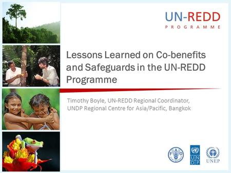 Lessons Learned on Co-benefits and Safeguards in the UN-REDD Programme Timothy Boyle, UN-REDD Regional Coordinator, UNDP Regional Centre for Asia/Pacific,