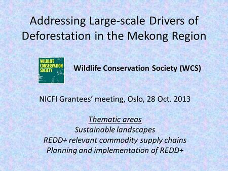 Addressing Large-scale Drivers of Deforestation in the Mekong Region Wildlife Conservation Society (WCS) NICFI Grantees' meeting, Oslo, 28 Oct. 2013 Thematic.