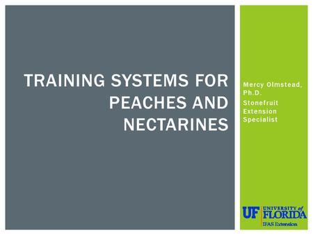 Mercy Olmstead, Ph.D. Stonefruit Extension Specialist TRAINING SYSTEMS FOR PEACHES AND NECTARINES.