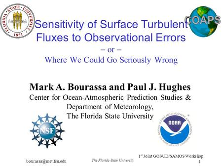 1 st Joint GOSUD/SAMOS Workshop The Florida State University 1 Sensitivity of Surface Turbulent Fluxes to Observational Errors  or.