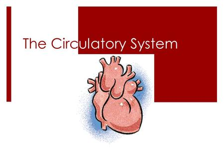 The Circulatory System. Warm Up:  OBJ/HW/WU on page 108  Read the Circulatory System Poem  Answer in your notebook:  How is the circulatory system.