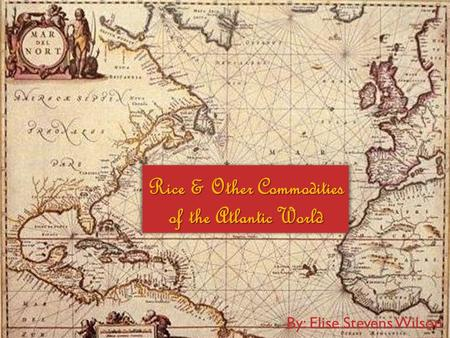 Rice & Other Commodities of the Atlantic World By: Elise Stevens Wilson.